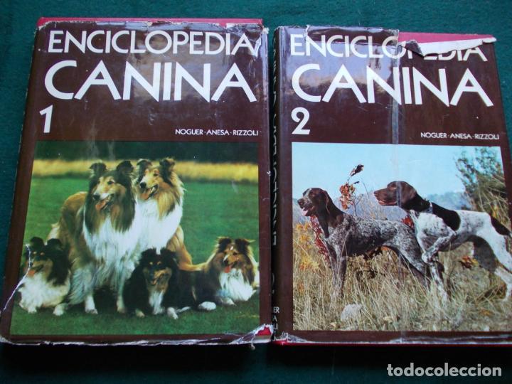 ENCICLOPEDIA CANINA NOGUER-ANESA-RIZZOLI (Libros de Segunda Mano - Enciclopedias)