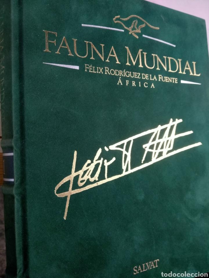 Enciclopedias de segunda mano: ENCICLOPEDIA SALVAT FAUNA MUNDIAL EDICIÓN NUMERADA . FÉLIX RODRÍGUEZ DE LA FUENTE - Foto 2 - 209200965