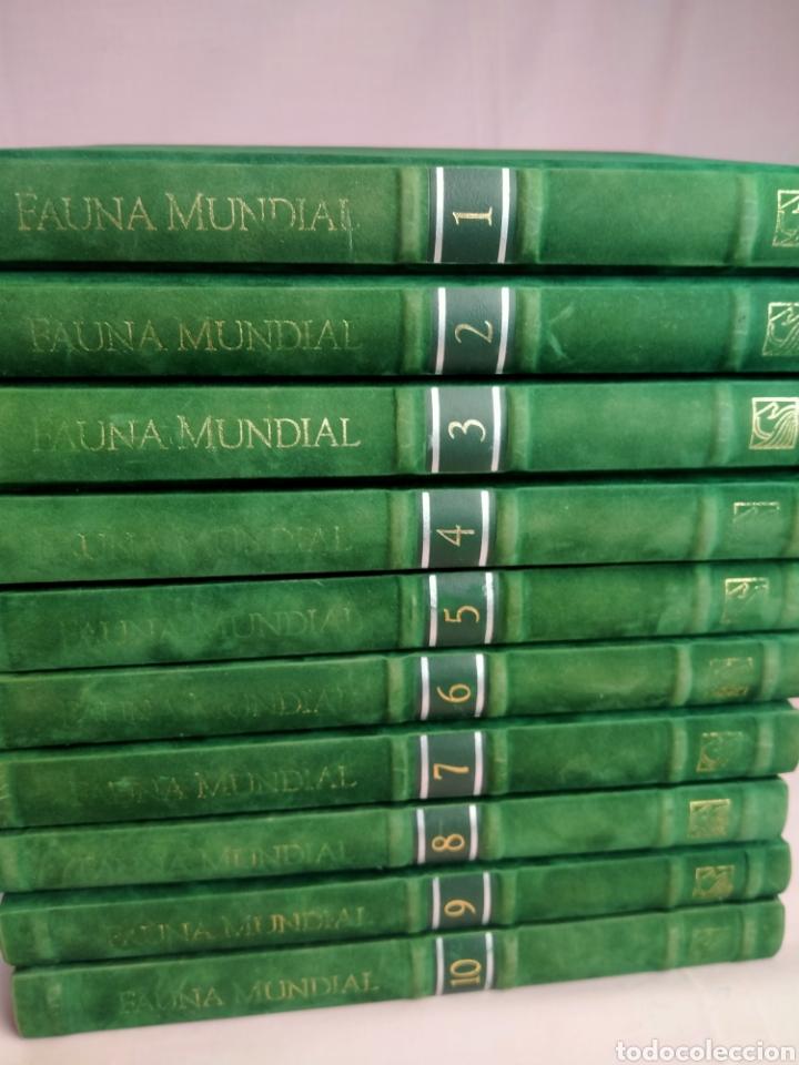 Enciclopedias de segunda mano: ENCICLOPEDIA SALVAT FAUNA MUNDIAL EDICIÓN NUMERADA . FÉLIX RODRÍGUEZ DE LA FUENTE - Foto 6 - 209200965