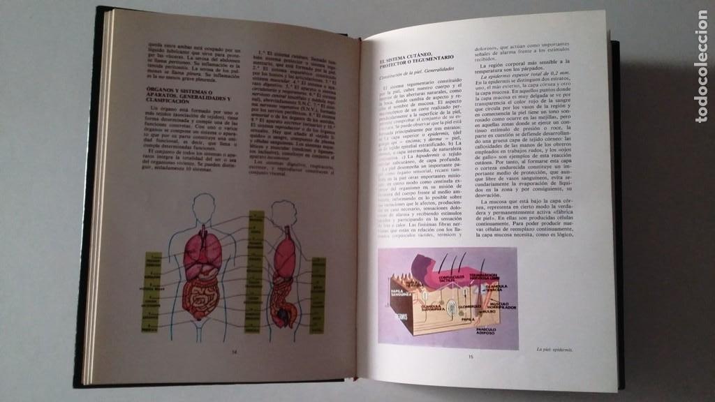 Enciclopedias de segunda mano: Consultor Pedagogico - Foto 2 - 123061663