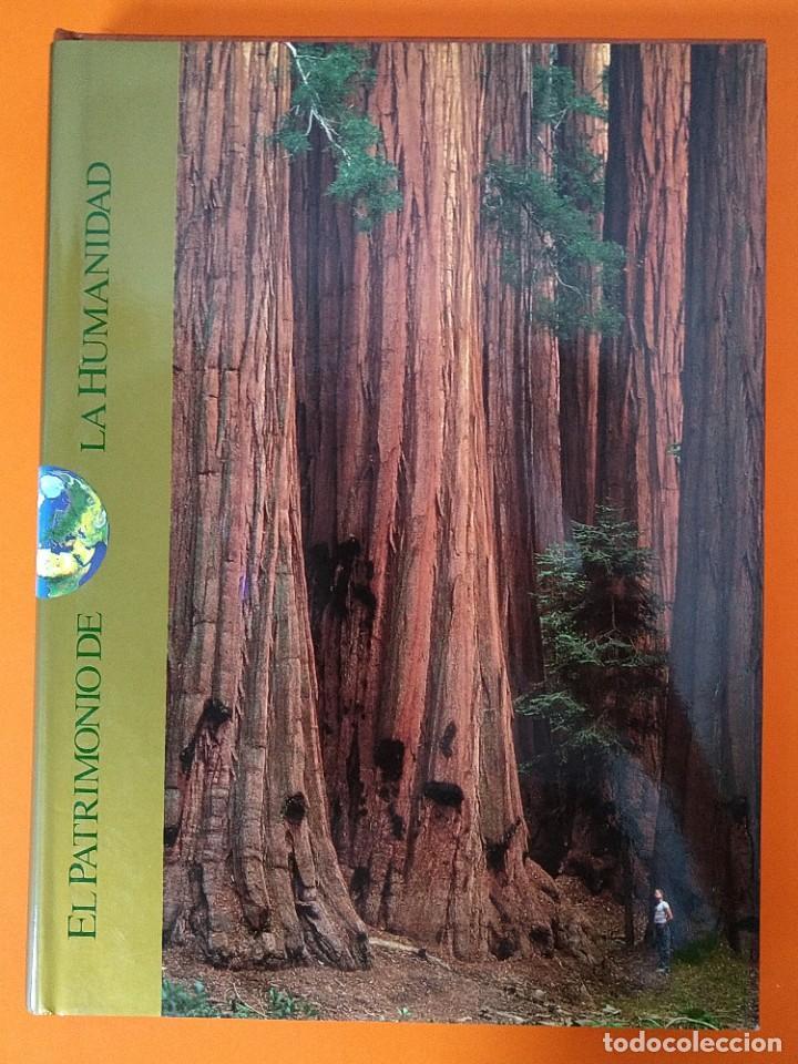 Enciclopedias de segunda mano: EL PATRIMONIO DE LA HUMANIDAD - COLECCION COMPLETA ( 10 TOMOS ) - EDILIBRO - AÑO 1996 ...L1630 - Foto 31 - 212596381