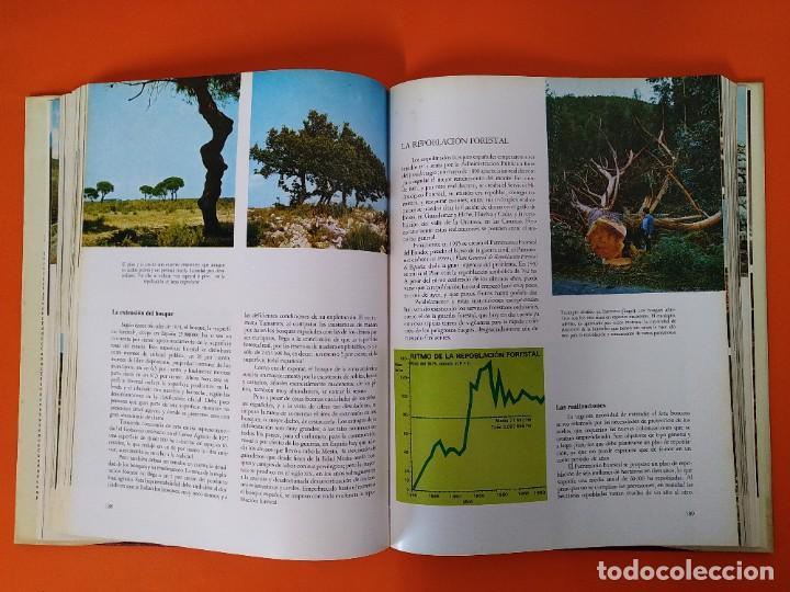 Enciclopedias de segunda mano: ENCICLOPEDIA ESPAÑA - COLECCION COMPLETA (2 TOMOS) - EDICIONES DANAE - AÑO 1979 ...L1662 - Foto 6 - 212758030