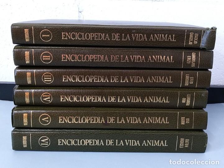 ENCICLOPEDIA DE LA VIDA ANIMAL - COMPLETA (6 VOLUMENES) - EDITORIAL BRUGUERA - AÑO 1976 ... L1724 (Libros de Segunda Mano - Enciclopedias)