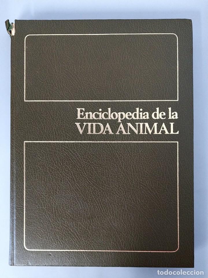 Enciclopedias de segunda mano: ENCICLOPEDIA DE LA VIDA ANIMAL - COMPLETA (6 VOLUMENES) - EDITORIAL BRUGUERA - AÑO 1976 ... L1724 - Foto 2 - 213228926
