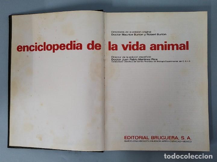 Enciclopedias de segunda mano: ENCICLOPEDIA DE LA VIDA ANIMAL - COMPLETA (6 VOLUMENES) - EDITORIAL BRUGUERA - AÑO 1976 ... L1724 - Foto 3 - 213228926