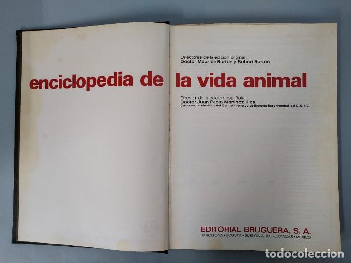 Enciclopedias de segunda mano: ENCICLOPEDIA DE LA VIDA ANIMAL - COMPLETA (6 VOLUMENES) - EDITORIAL BRUGUERA - AÑO 1976 ... L1724 - Foto 8 - 213228926