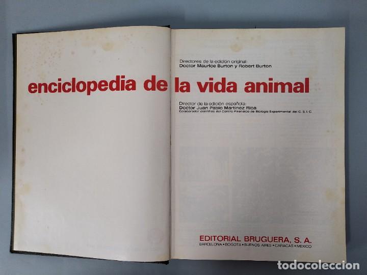 Enciclopedias de segunda mano: ENCICLOPEDIA DE LA VIDA ANIMAL - COMPLETA (6 VOLUMENES) - EDITORIAL BRUGUERA - AÑO 1976 ... L1724 - Foto 13 - 213228926