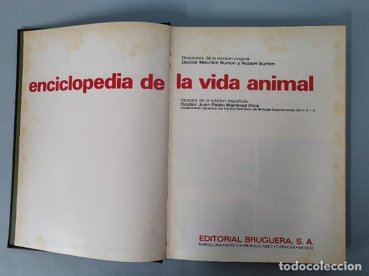 Enciclopedias de segunda mano: ENCICLOPEDIA DE LA VIDA ANIMAL - COMPLETA (6 VOLUMENES) - EDITORIAL BRUGUERA - AÑO 1976 ... L1724 - Foto 18 - 213228926