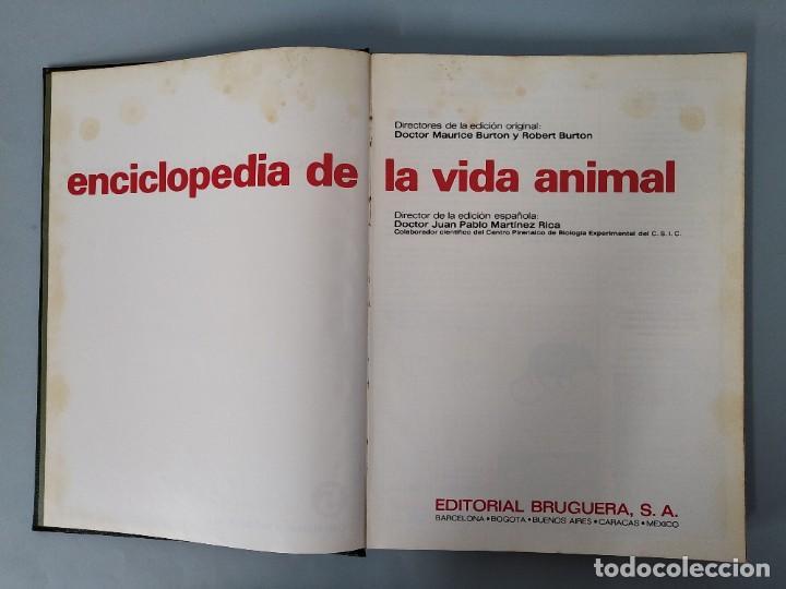 Enciclopedias de segunda mano: ENCICLOPEDIA DE LA VIDA ANIMAL - COMPLETA (6 VOLUMENES) - EDITORIAL BRUGUERA - AÑO 1976 ... L1724 - Foto 23 - 213228926