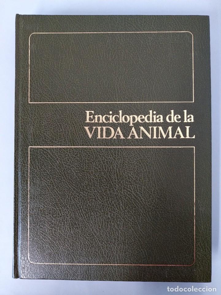 Enciclopedias de segunda mano: ENCICLOPEDIA DE LA VIDA ANIMAL - COMPLETA (6 VOLUMENES) - EDITORIAL BRUGUERA - AÑO 1976 ... L1724 - Foto 27 - 213228926