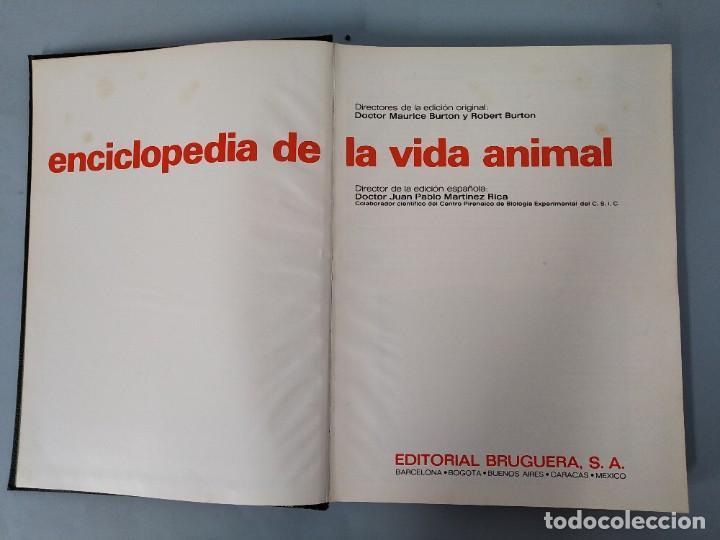 Enciclopedias de segunda mano: ENCICLOPEDIA DE LA VIDA ANIMAL - COMPLETA (6 VOLUMENES) - EDITORIAL BRUGUERA - AÑO 1976 ... L1724 - Foto 28 - 213228926