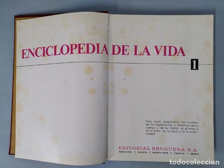 Enciclopedias de segunda mano: ENCICLOPEDIA DE LA VIDA - 5 TOMOS, COMPLETA - AÑO 1974 - ED. BRUGUERA ... L1746 - Foto 4 - 214079178