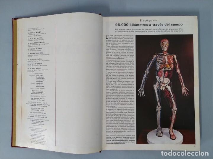 Enciclopedias de segunda mano: ENCICLOPEDIA DE LA VIDA - 5 TOMOS, COMPLETA - AÑO 1974 - ED. BRUGUERA ... L1746 - Foto 12 - 214079178