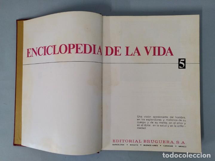 Enciclopedias de segunda mano: ENCICLOPEDIA DE LA VIDA - 5 TOMOS, COMPLETA - AÑO 1974 - ED. BRUGUERA ... L1746 - Foto 29 - 214079178
