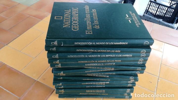 EL MARAVILLOSO MUNDO DE LOS ANIMALES - NATIONAL GEOGRAPHIC 17 TOMOS COMPLETA (Libros de Segunda Mano - Enciclopedias)