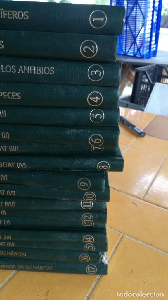 Enciclopedias de segunda mano: EL MARAVILLOSO MUNDO DE LOS ANIMALES - NATIONAL GEOGRAPHIC 17 TOMOS COMPLETA - Foto 2 - 219442651