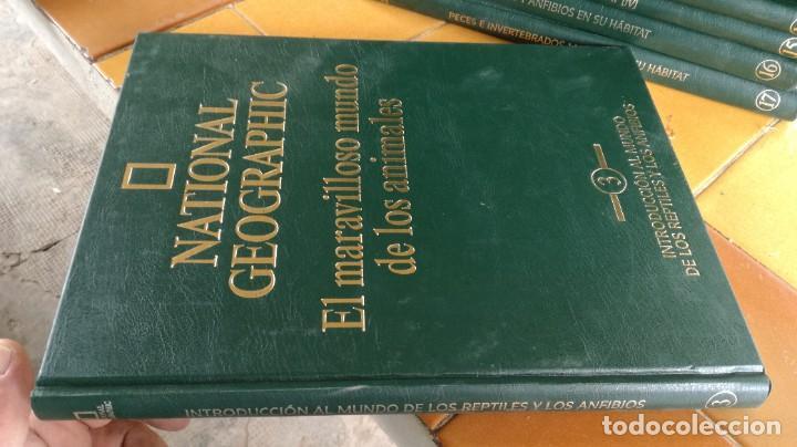 Enciclopedias de segunda mano: EL MARAVILLOSO MUNDO DE LOS ANIMALES - NATIONAL GEOGRAPHIC 17 TOMOS COMPLETA - Foto 5 - 219442651
