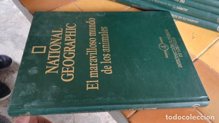 Enciclopedias de segunda mano: EL MARAVILLOSO MUNDO DE LOS ANIMALES - NATIONAL GEOGRAPHIC 17 TOMOS COMPLETA - Foto 6 - 219442651