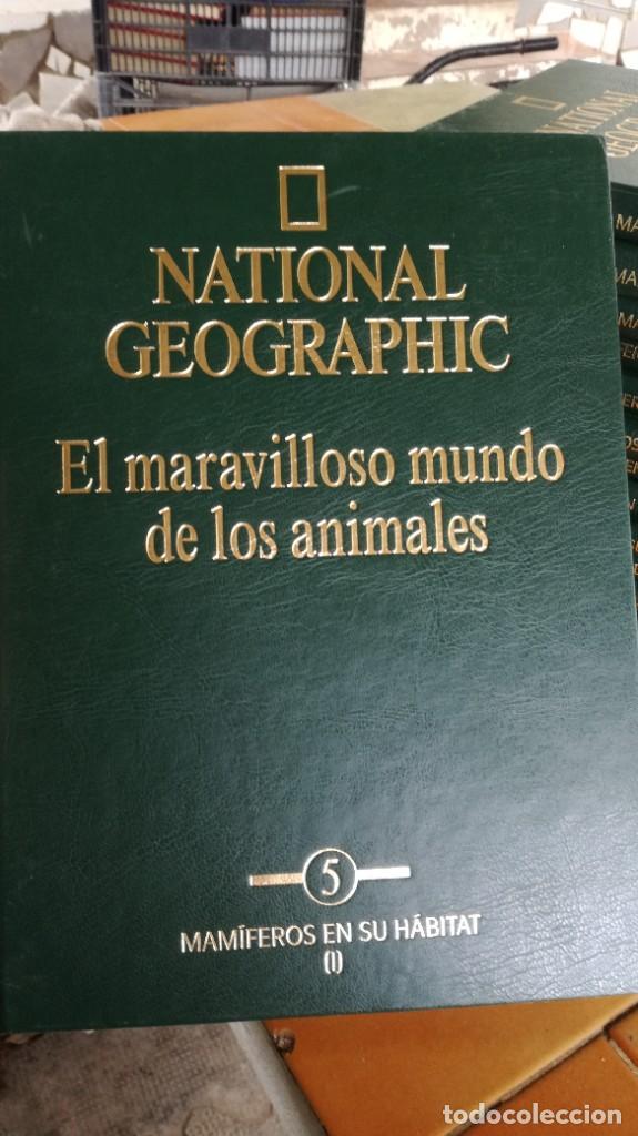 Enciclopedias de segunda mano: EL MARAVILLOSO MUNDO DE LOS ANIMALES - NATIONAL GEOGRAPHIC 17 TOMOS COMPLETA - Foto 7 - 219442651