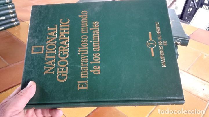 Enciclopedias de segunda mano: EL MARAVILLOSO MUNDO DE LOS ANIMALES - NATIONAL GEOGRAPHIC 17 TOMOS COMPLETA - Foto 9 - 219442651