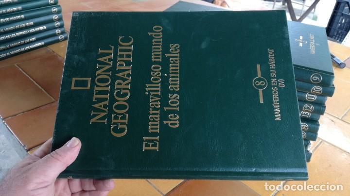 Enciclopedias de segunda mano: EL MARAVILLOSO MUNDO DE LOS ANIMALES - NATIONAL GEOGRAPHIC 17 TOMOS COMPLETA - Foto 10 - 219442651