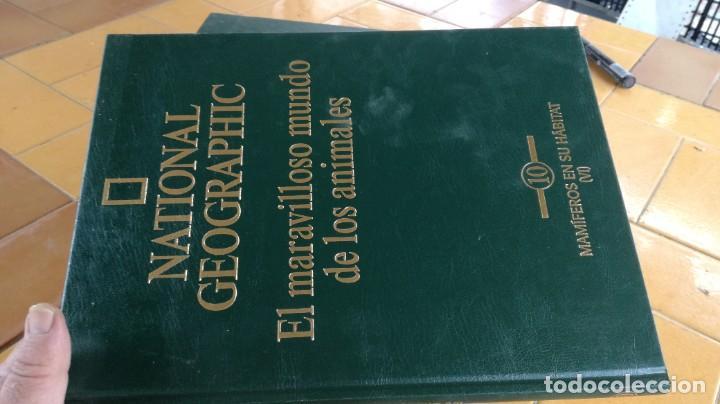Enciclopedias de segunda mano: EL MARAVILLOSO MUNDO DE LOS ANIMALES - NATIONAL GEOGRAPHIC 17 TOMOS COMPLETA - Foto 12 - 219442651