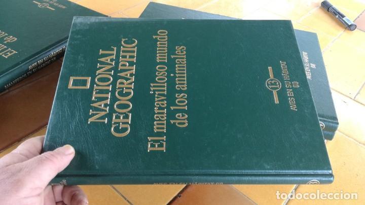 Enciclopedias de segunda mano: EL MARAVILLOSO MUNDO DE LOS ANIMALES - NATIONAL GEOGRAPHIC 17 TOMOS COMPLETA - Foto 15 - 219442651