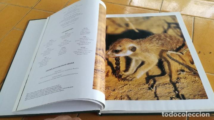 Enciclopedias de segunda mano: EL MARAVILLOSO MUNDO DE LOS ANIMALES - NATIONAL GEOGRAPHIC 17 TOMOS COMPLETA - Foto 26 - 219442651