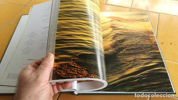 Enciclopedias de segunda mano: EL MARAVILLOSO MUNDO DE LOS ANIMALES - NATIONAL GEOGRAPHIC 17 TOMOS COMPLETA - Foto 31 - 219442651