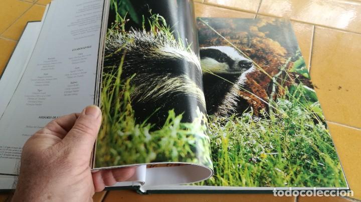 Enciclopedias de segunda mano: EL MARAVILLOSO MUNDO DE LOS ANIMALES - NATIONAL GEOGRAPHIC 17 TOMOS COMPLETA - Foto 39 - 219442651