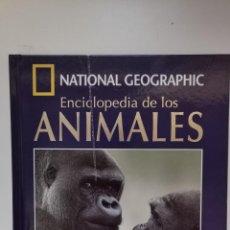Enciclopedias de segunda mano: ENCICLOPEDIA DE LOS ANIMALES MAMIFEROS. Lote 220618511