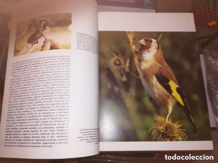 FAUNA IBÉRICA Y EUROPEA 10 VOLÚMENES NUMERADA 1992 FÉLIX RODRÍGUEZ DE LA FUENTE ED. SALVAT (Libros de Segunda Mano - Enciclopedias)