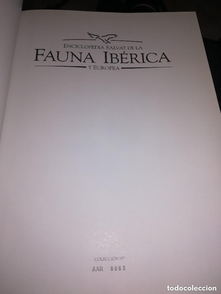 Enciclopedias de segunda mano: FAUNA IBÉRICA Y EUROPEA 10 VOLÚMENES NUMERADA 1992 FÉLIX RODRÍGUEZ DE LA FUENTE ED. SALVAT - Foto 6 - 222705613