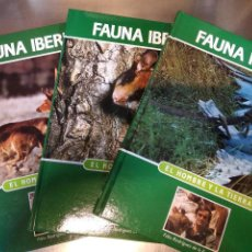 Livros em segunda mão: 30 TOMOS ENCICLOPEDIA FAUNA IBERICA - FÉLIX RODRIGUEZ DE LA FUENTE - SALVAT - ENM. Lote 224594562