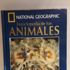 Enciclopedias de segunda mano: ENCICLOPEDIA DE LOS ANIMALES / 19 / PECES IV / NATIONAL GEOGRAPHIC / LIBRO + DVD / NUEVO.. Lote 228047185