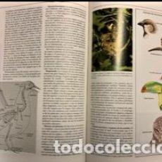 Libri di seconda mano: ENCICLOPEDIA HISPÁNICA (EDITADO POR ENCICLOPEDIA BRITANNICA PUBLISHERS ). Lote 234666795