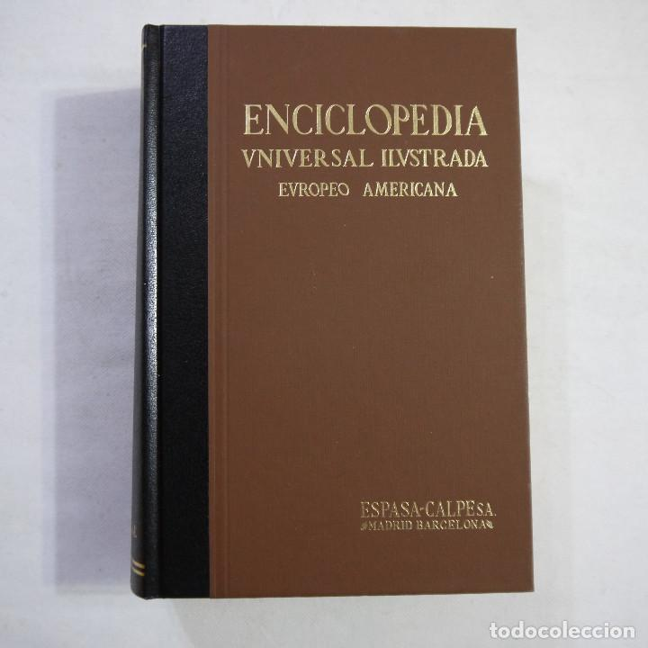 ENCICLOPEDIA UNIVERSAL ILUSTRADA EUROPEO AMERICANA. INDEX 1934-1996 - ESPASA-CALPE (Libros de Segunda Mano - Enciclopedias)