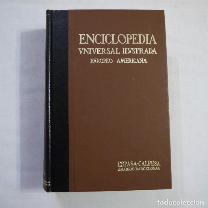 ENCICLOPEDIA UNIVERSAL ILUSTRADA EUROPEO AMERICANA. SUPLEMENTO 1981-1982 - ESPASA-CALPE (Libros de Segunda Mano - Enciclopedias)