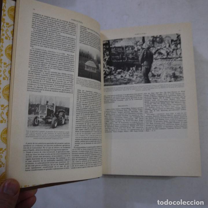 Enciclopedias de segunda mano: ENCICLOPEDIA UNIVERSAL ILUSTRADA EUROPEO AMERICANA. SUPLEMENTO 1981-1982 - ESPASA-CALPE - Foto 7 - 236783435
