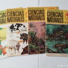 Enciclopedias de segunda mano: LOTE ENCICLOPEDIA CIENCIAS NATURALES NÚMEROS 20, 22, 24 Y 25. Lote 244192070