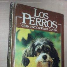 Enciclopedias de segunda mano: LOS PERROS: GRAN ENCICLOPEDIA CANINA, NUMERO 2 (PLANETA DE AGOSTINI). Lote 249206795