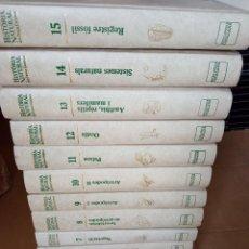 Enciclopedias de segunda mano: 16 VOL.HISTORIA NATURAL DELS PAÏSOS CATALANS, ENCICLOPEDIA CATALANA,. Lote 252333980