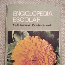 Enciclopedias de segunda mano: ENCICLOPEDIA ESCOLAR H.S.R.: INICIACIÓN PROFESIONAL (DOCE-QUINCE AÑOS) / ILUSTRADO POR SORAVILLA. Lote 253622985
