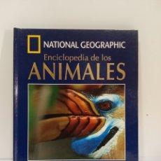 Enciclopedias de segunda mano: NATIONAL GEOGRAPHIC - ENCICLOPEDIA DE LOS ANIMALES - AVES 3. Lote 253698010