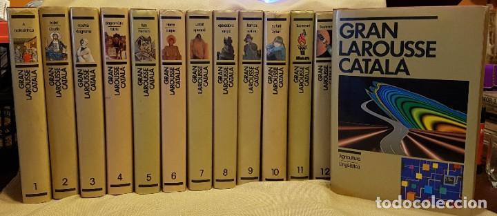 GRAN LAROUSSE EN CATALÀ EDICIONS 62 1990 12 VOL + 2 APENDIS (Libros de Segunda Mano - Enciclopedias)