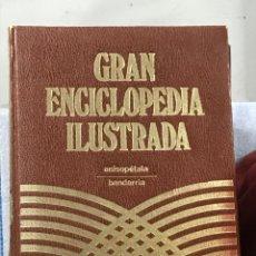 Enciclopedias de segunda mano: GRAN ENCICLOPEDIA ILUSTRADA. Lote 262957330