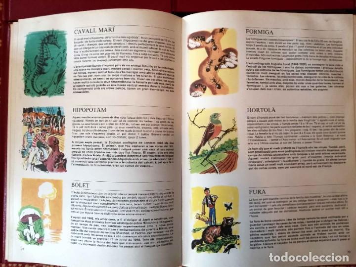 Enciclopedias de segunda mano: Nova enciclopèdia per a la joventut Ho sé tot sobre… 6 tomos Argos Vergara - Foto 4 - 266771274