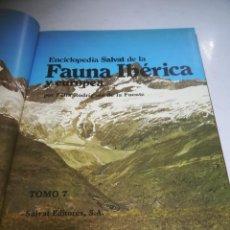 Libri di seconda mano: ENCICLOPEDIA SALVAT. FAUNA IBERICA Y EUROPEA. FELIX RODRIGUEZ DE LA FUENTE. TOMO 7. SALVAT EDITORES. Lote 267715729