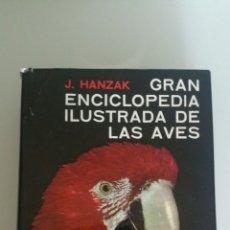 Enciclopedias de segunda mano: GRAN ENCICLOPEDIA ILUSTRADA DE LAS AVES. J. HANZAK, CÍRCULO DE LECTORES, SEPTIEMBRE 1971. Lote 277579453