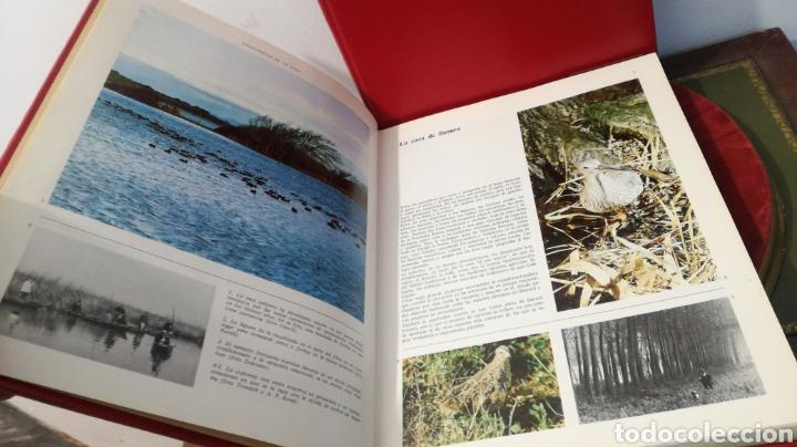 Enciclopedias de segunda mano: enciclopedia de la CAZA - 2 TOMOS - VERGARA - Foto 11 - 288947608